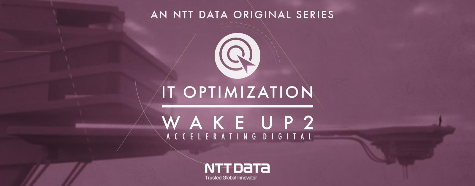 IT Optimization